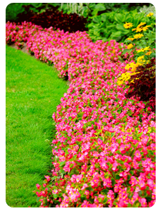 Landscaping in Halifax - Image 2